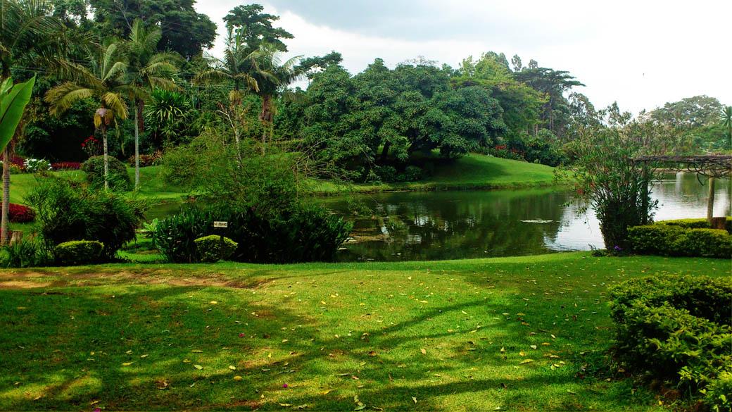 Kapsimotwa gardens_grounds2
