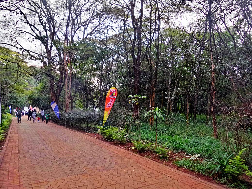 Koroga Festival_walkway
