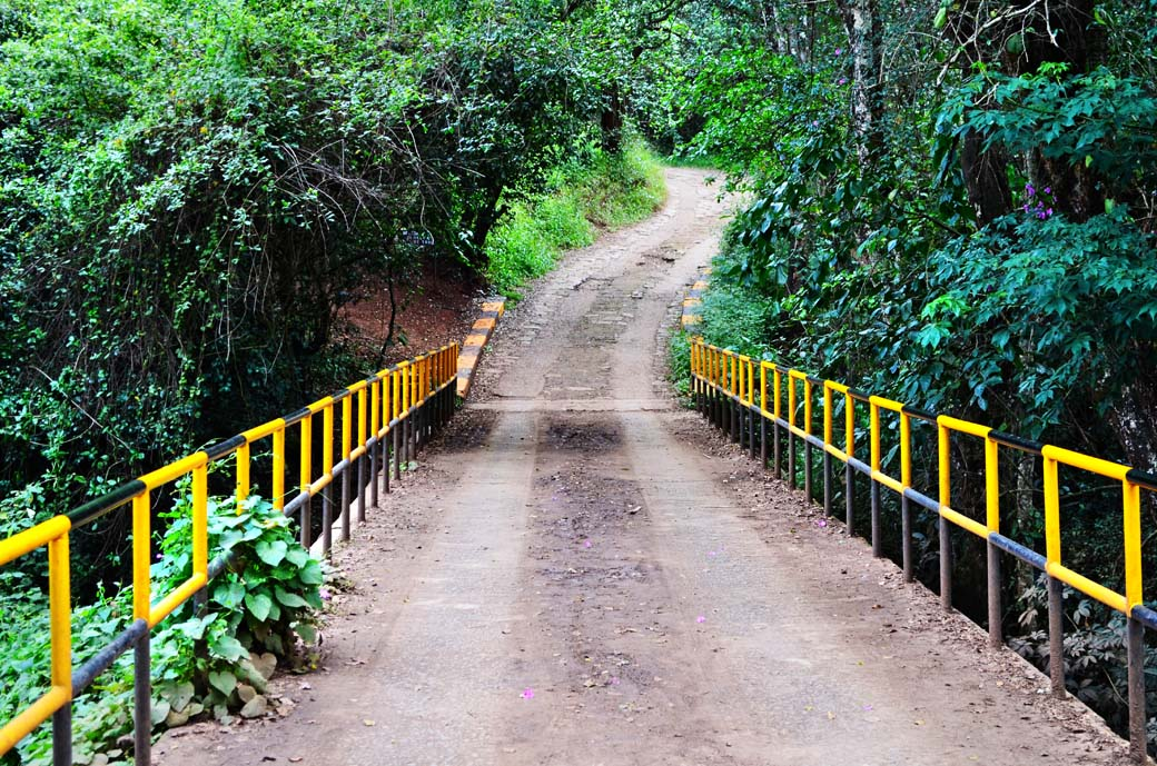 Oloolua Nature Trail_Bridge