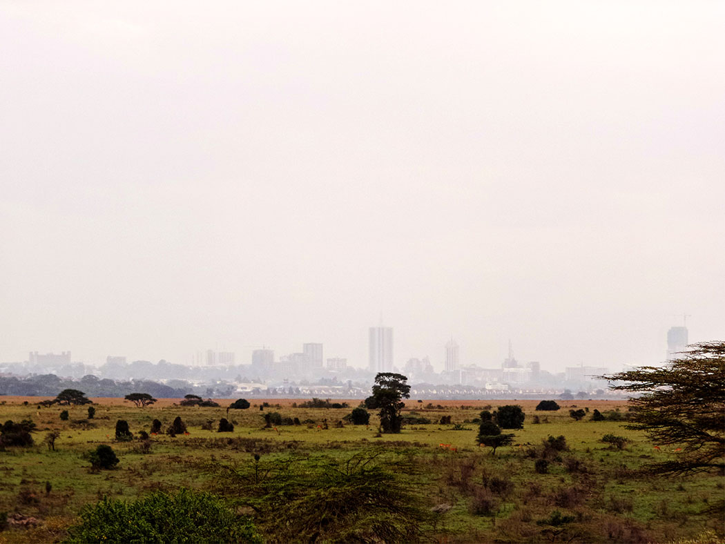 Masai Lodge_View of CBD