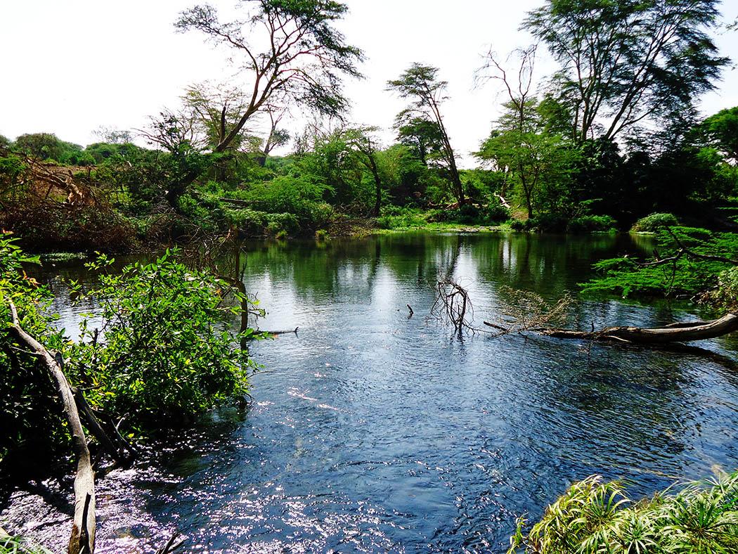 Chyulu Hills_mzima springs