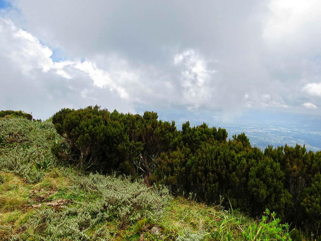 Elephant Hill Aberdares_top6