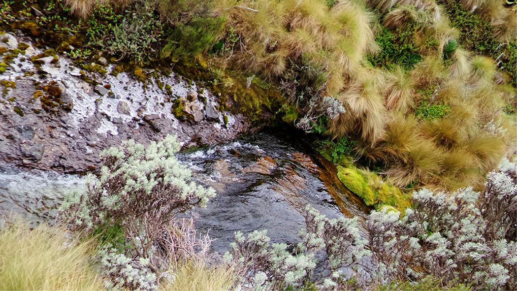 Mount Kenya_stream 4