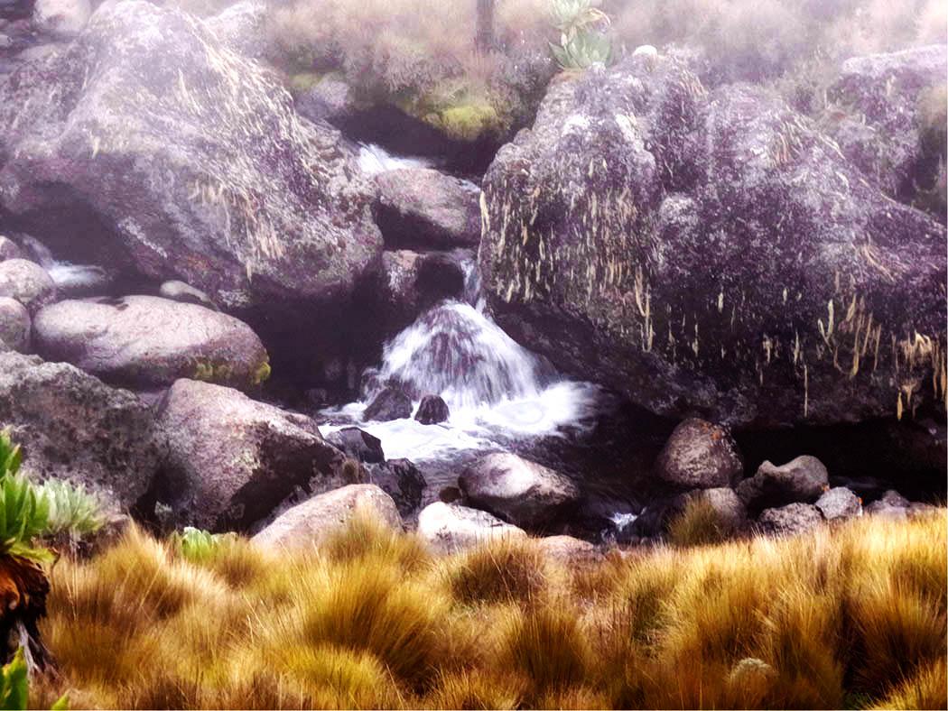 Mount Kenya_stream 5