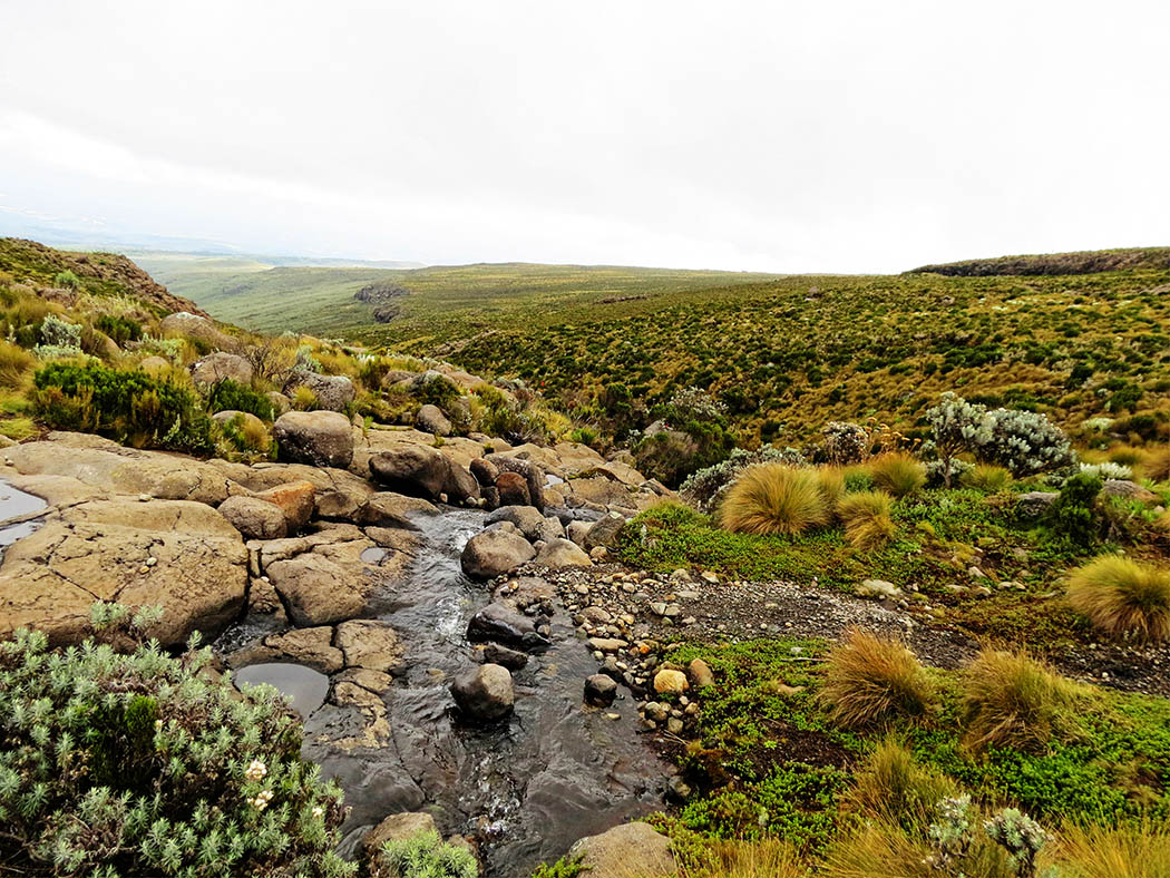 Mount Kenya_stream