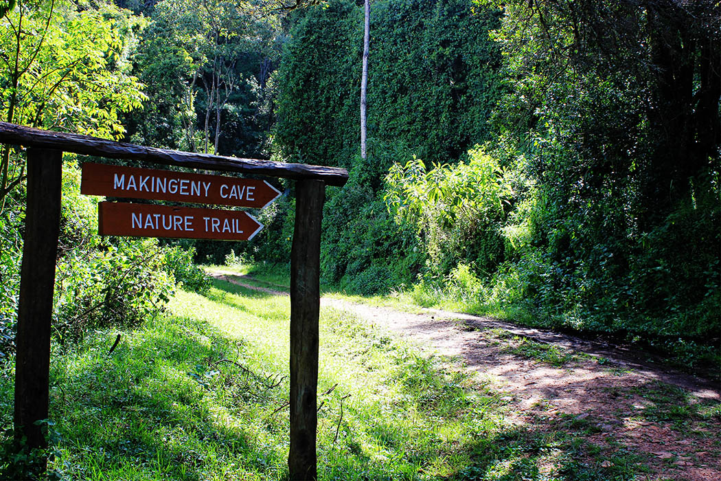 Unexpected Kenya _Makigeny nature trail