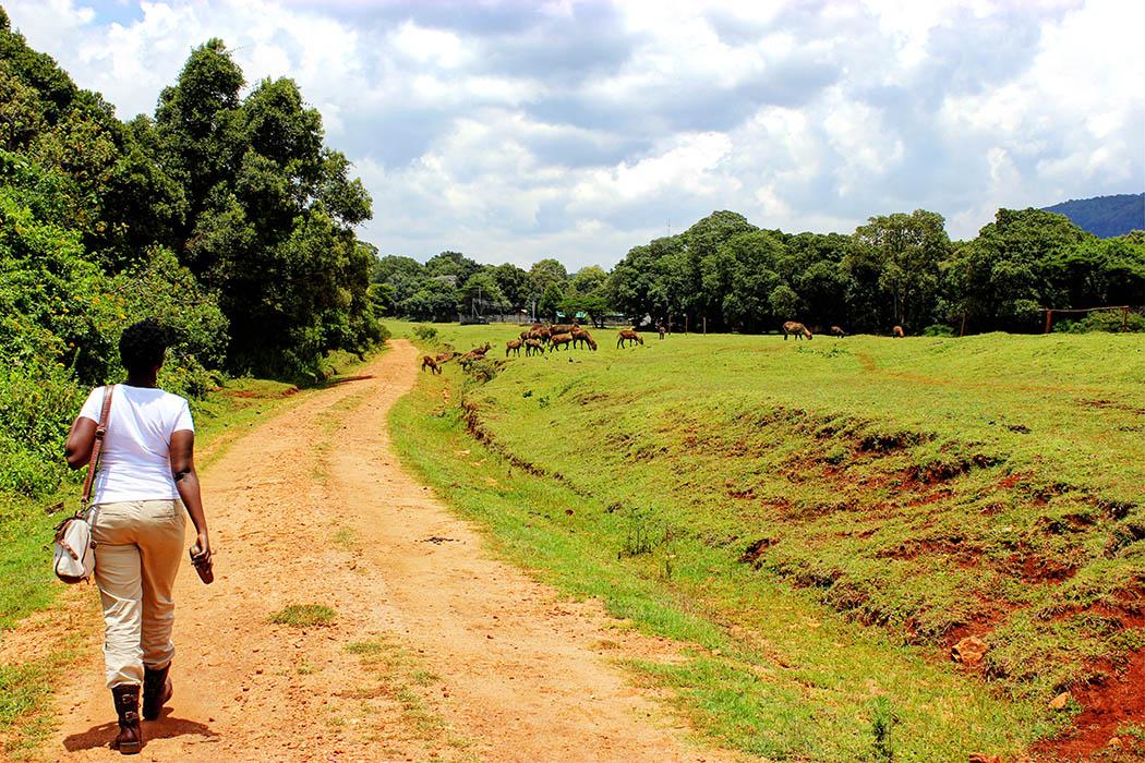 Unexpected Kenya day 1_Chela