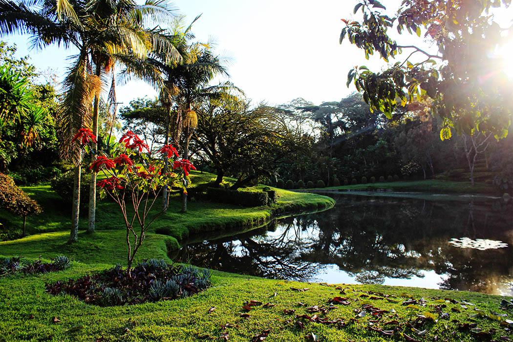Unexpected Kenya_Kapsimotwa Gardens2