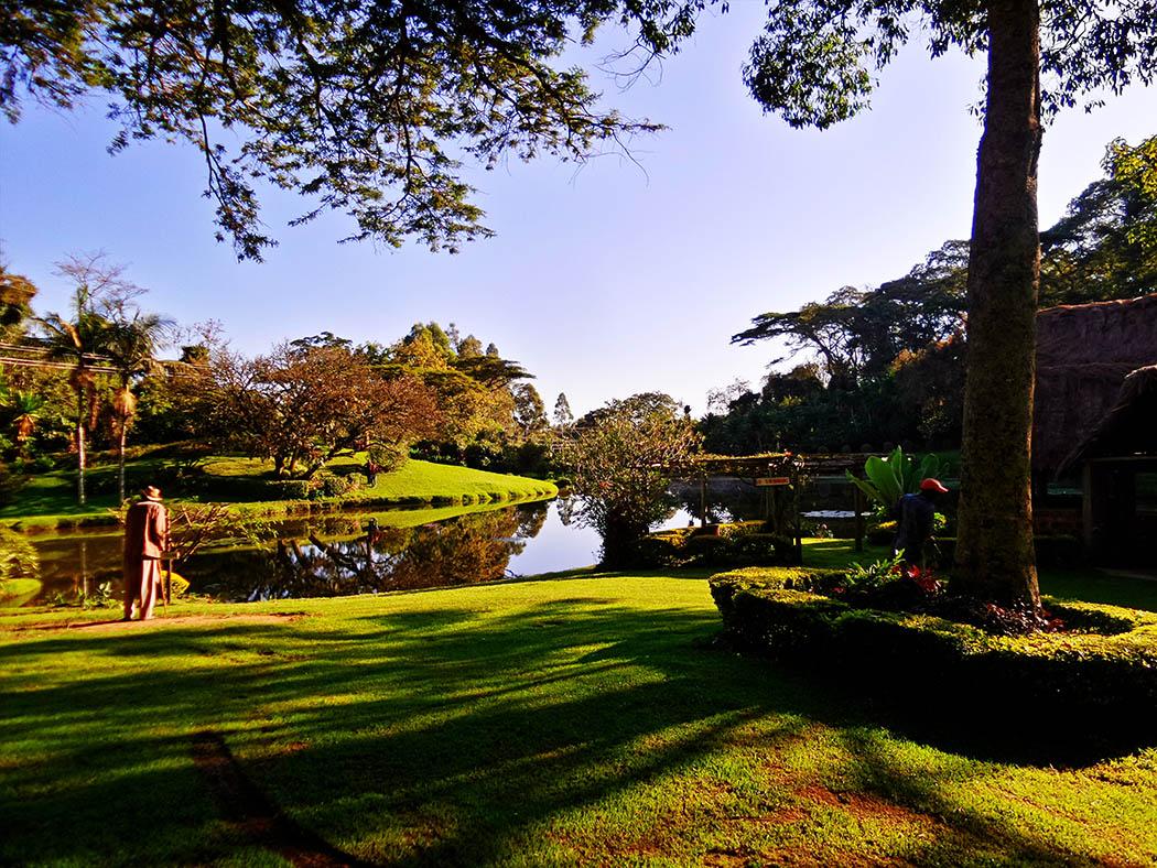 Unexpected Kenya_Kapsimotwa Gardens3