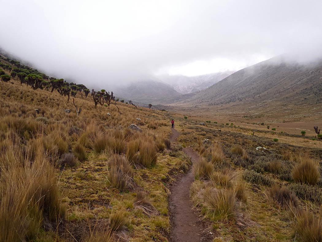 Mount Kenya_Mackinder's valley 13