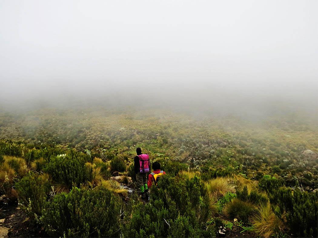 Mount Kenya_Mackinder's valley 3