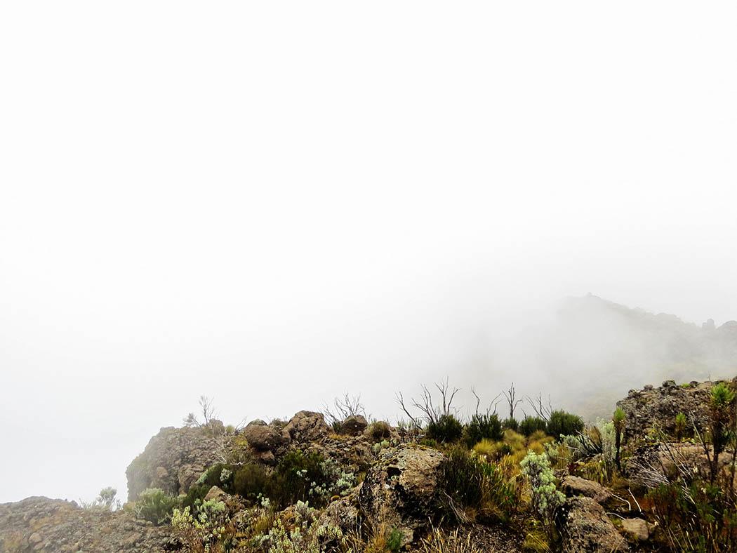 Mount Kenya_Mackinder's valley 7