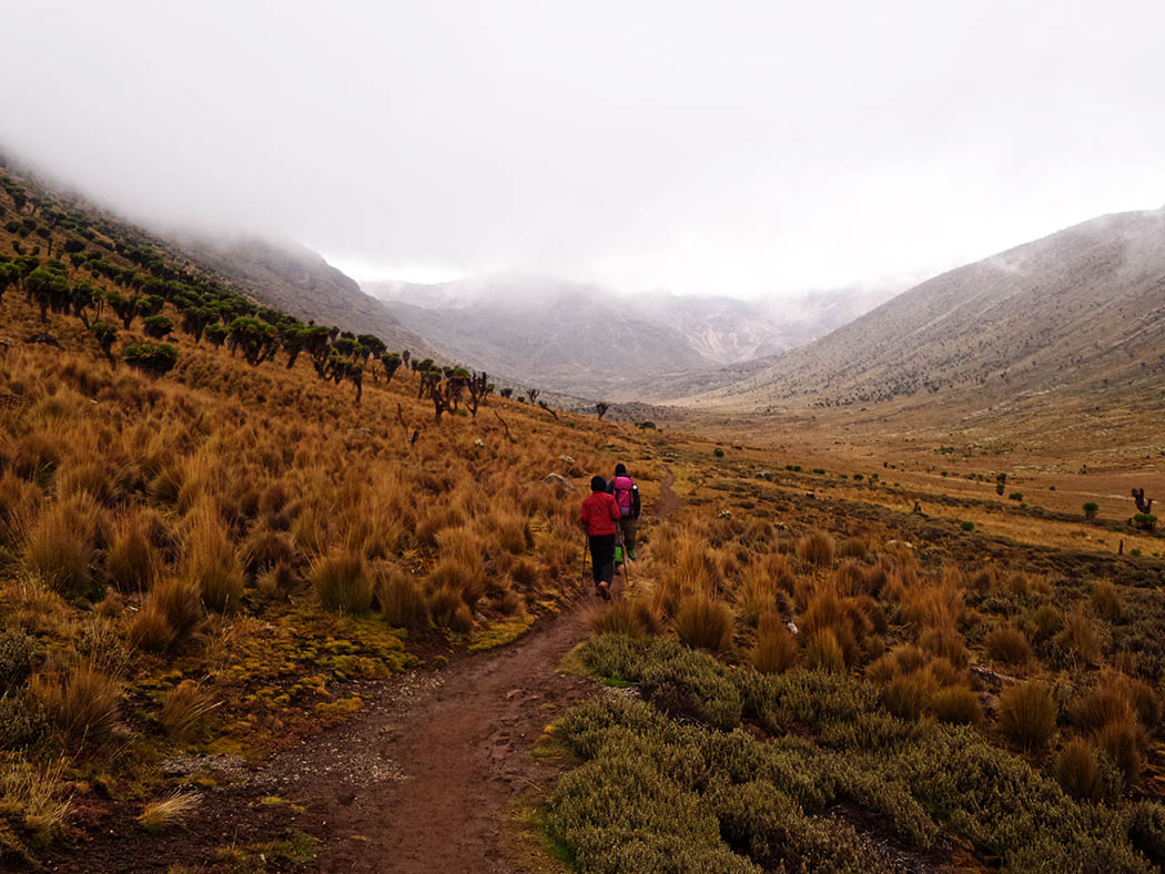 Mount Kenya_Mackinder's valley 9