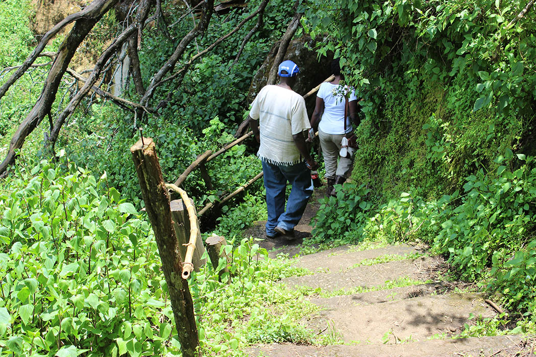 Mt Elgon National Park_Path to kitum cave