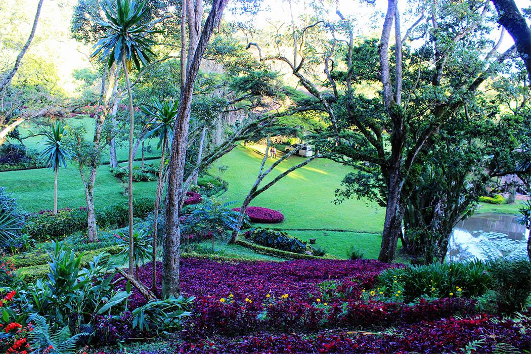 Kapsimotwa gardens_hillock2