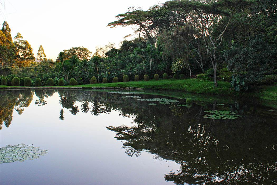 Kapsimotwa gardens_lake3