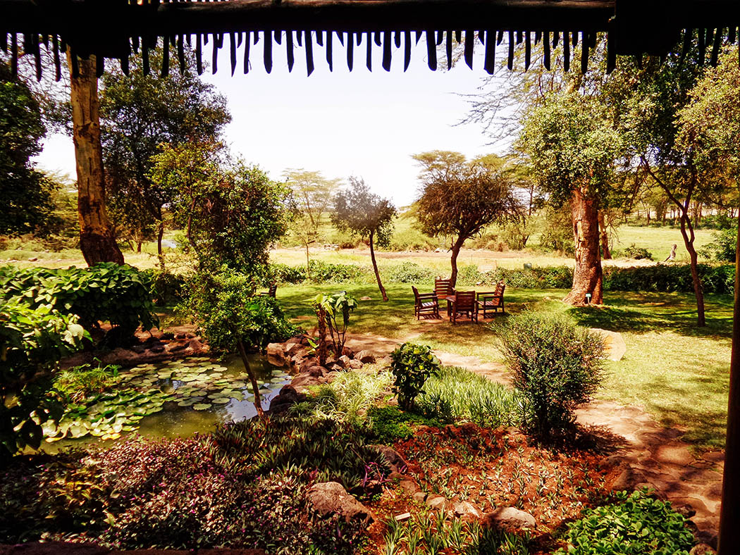 Amboseli Serena Safari Lodge_view from reception