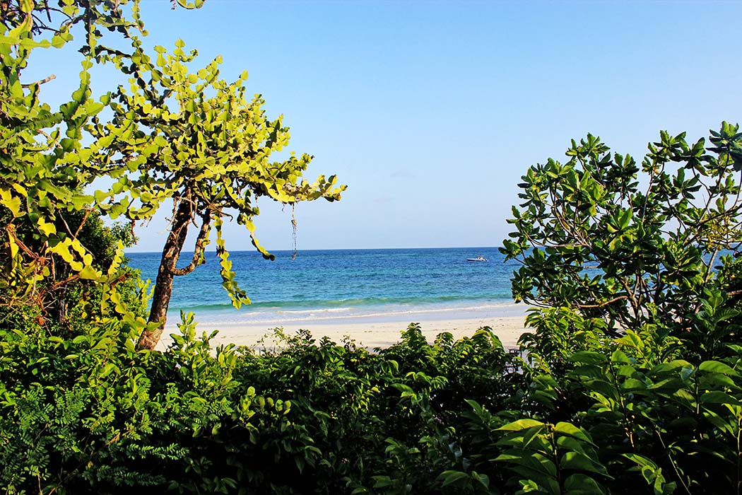 The Sands at Chale Island_ view of beach from cottage