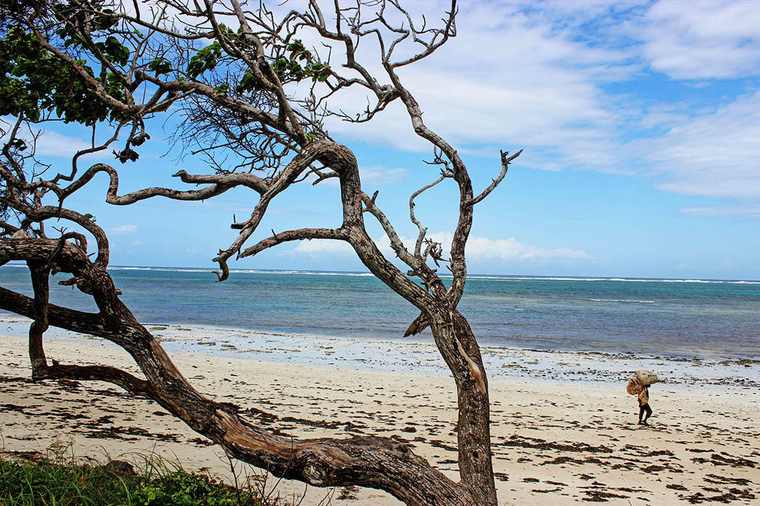 Jumba la mtwana_Beach