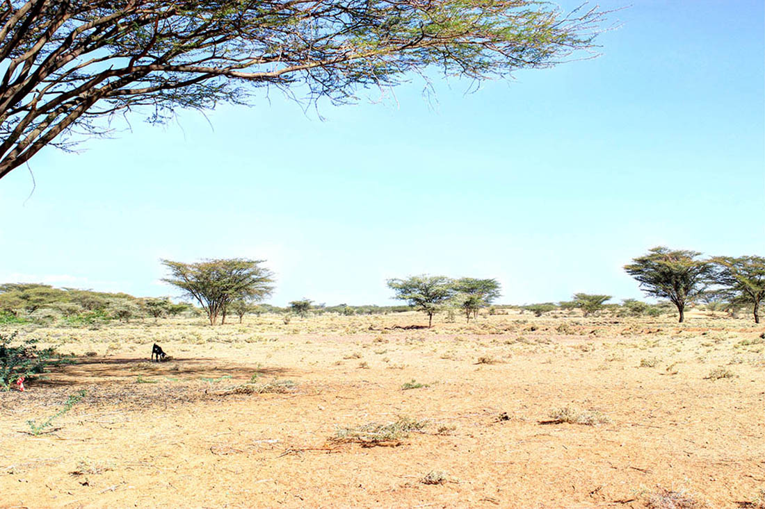 Lake Turkana_perched land
