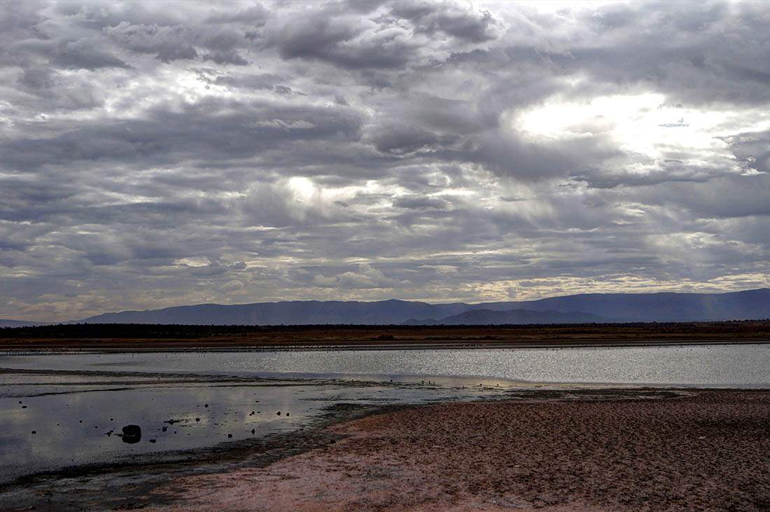 Lake Magadi2