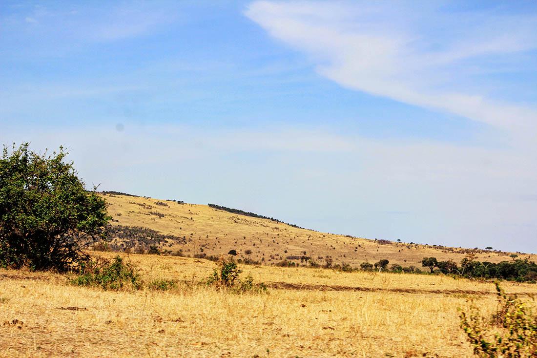 Maasai Mara_Landscape2