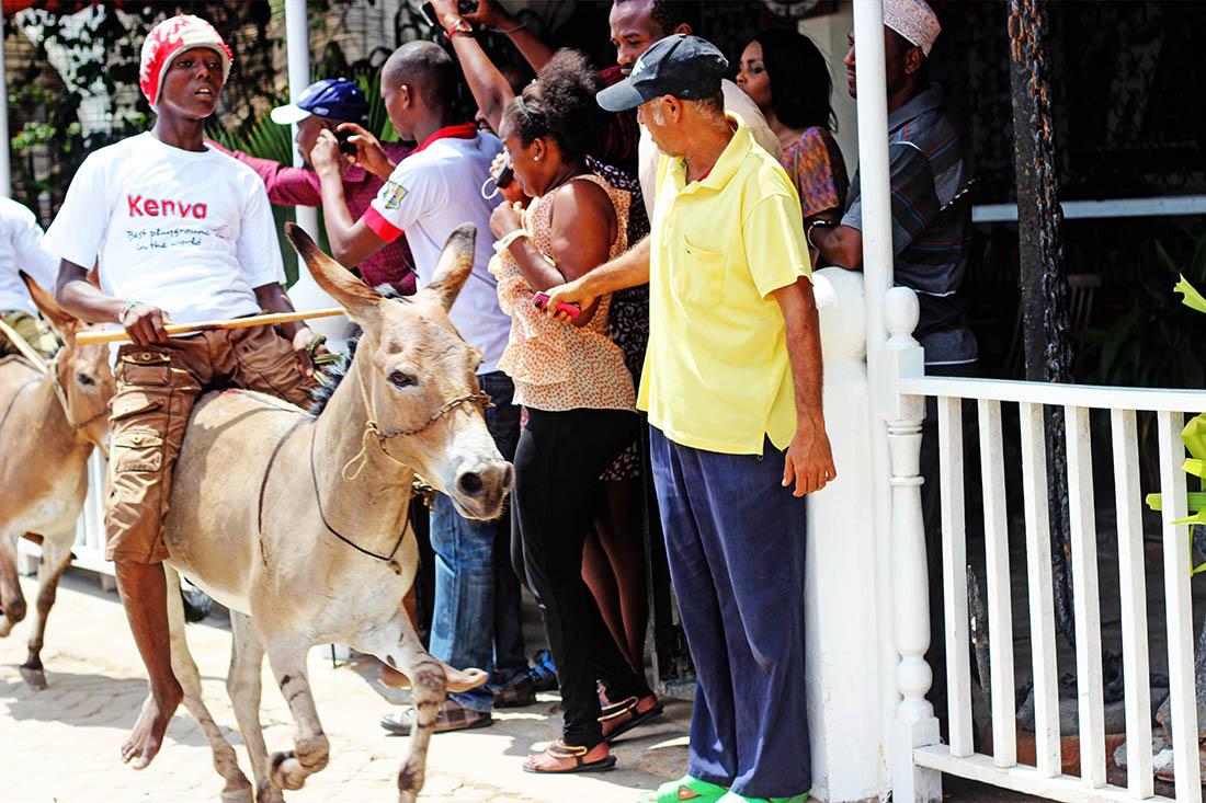 Lamu Cultural Festival_donkey race