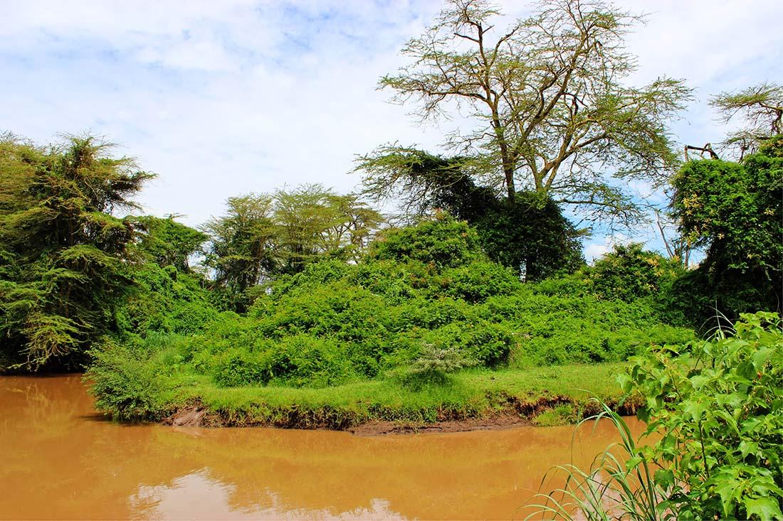 Sweetwaters Chimpanzee Sanctuary_Ewaso Nyiro river 2