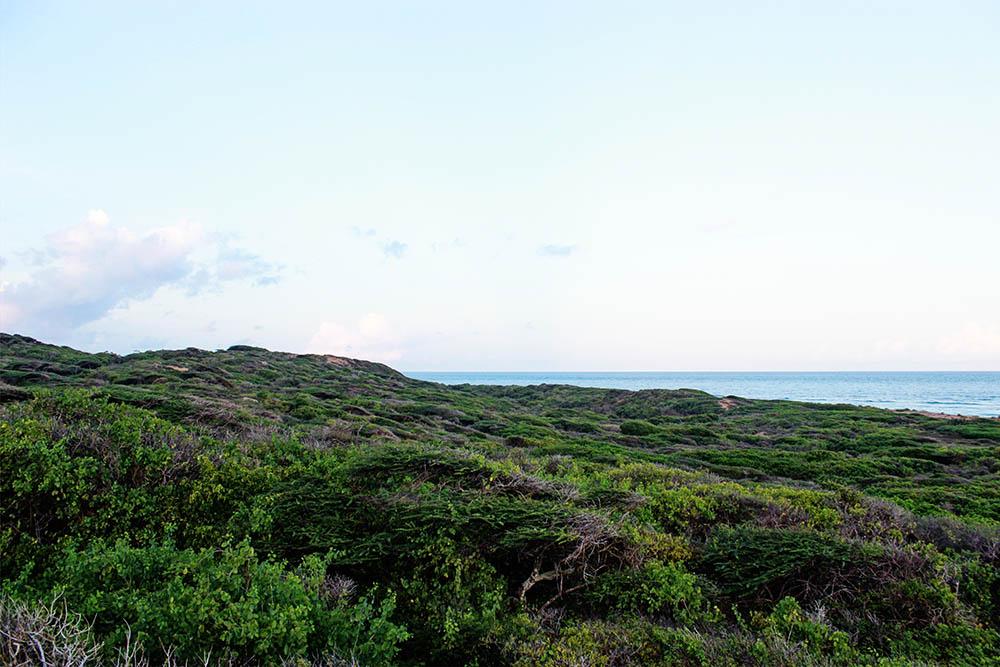 Takwa Ruins_Coast