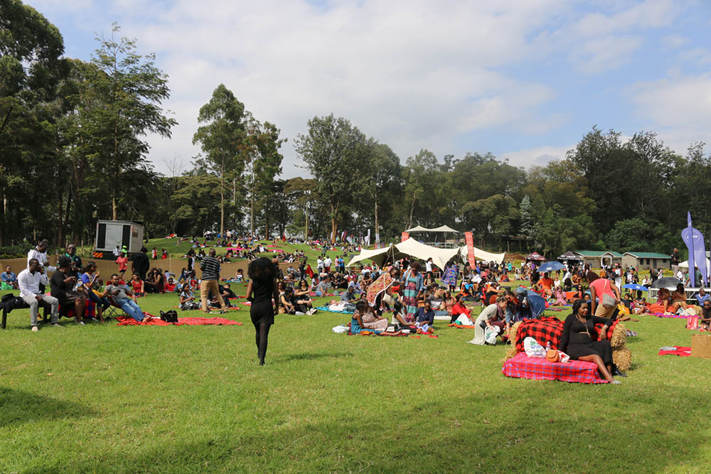Blankets and Wine July 2016_Crowd