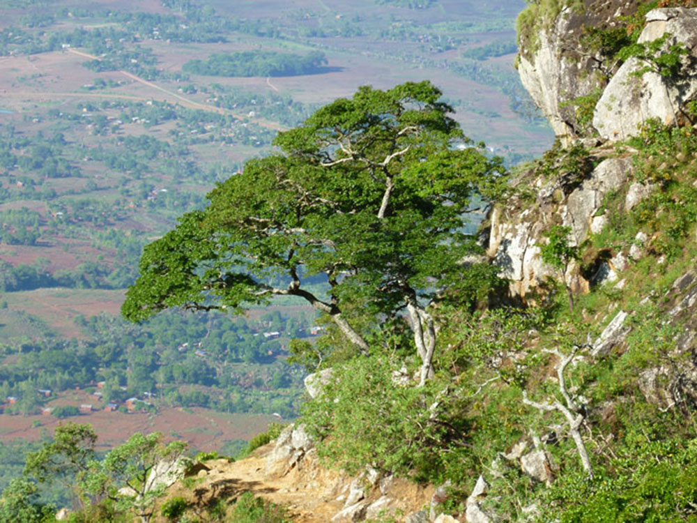 Mount Mulanje_view 2