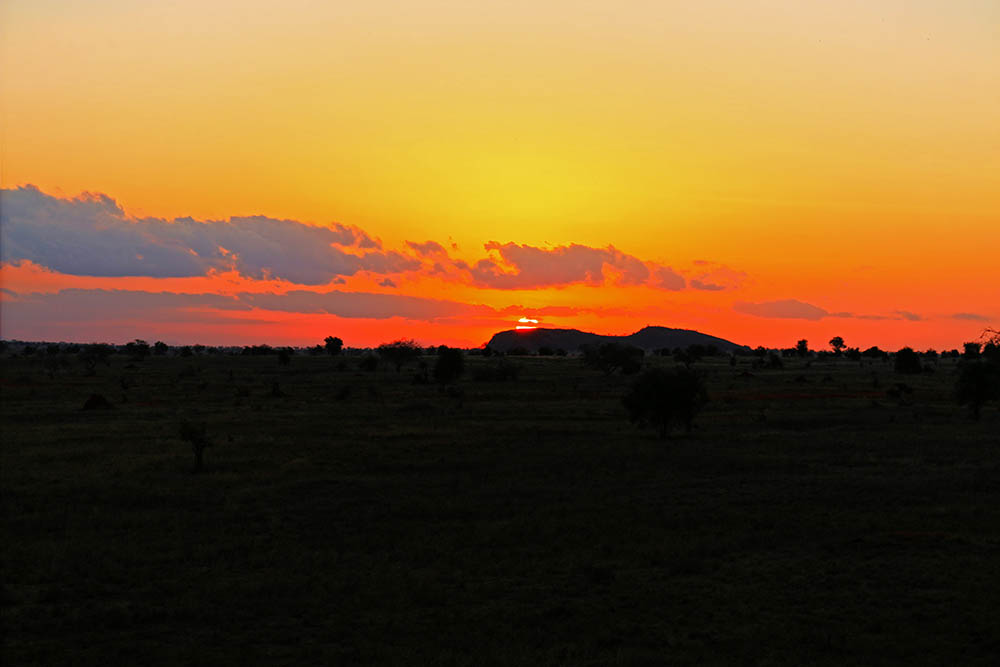 sarova-salt-lick-game-lodge_sunset