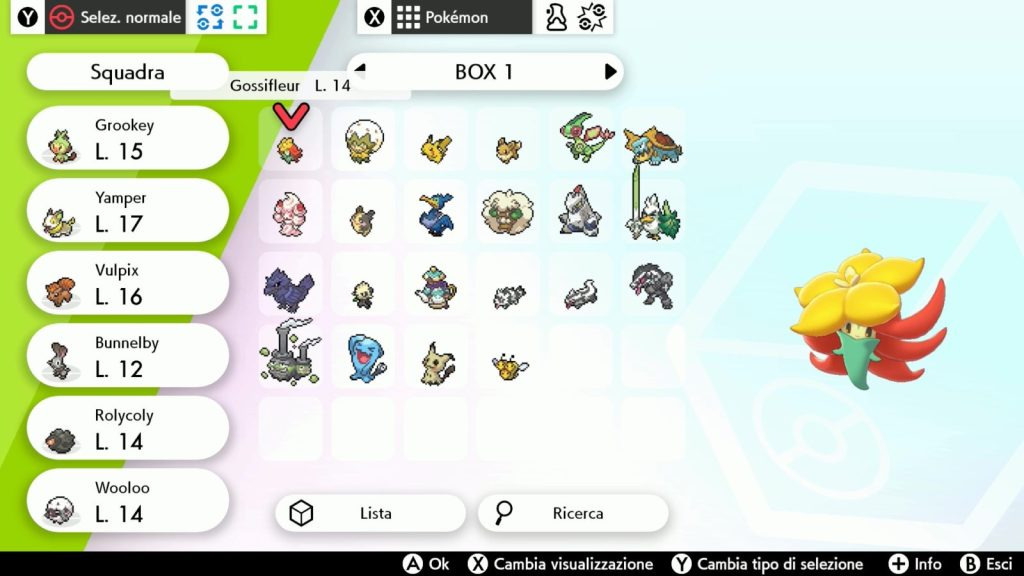 Box Pokemon