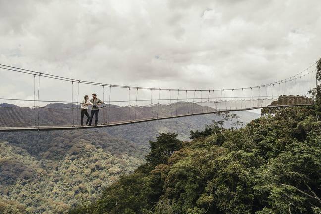 safari-in-rwanda-canopy-walkway_01