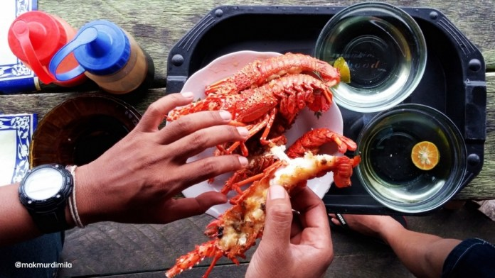 Lobster Simeulue