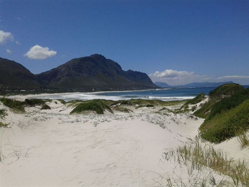 Bettys Bay Beach Flatlet Bettys Bay  Your Cape Town South Africa