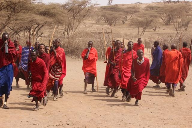 9 Day Ngorongoro Game Drive and Walking Safari