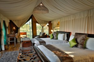6 days luxury lodge safari