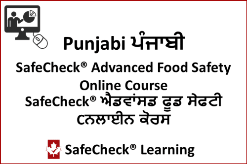 Food Handler Punjabi