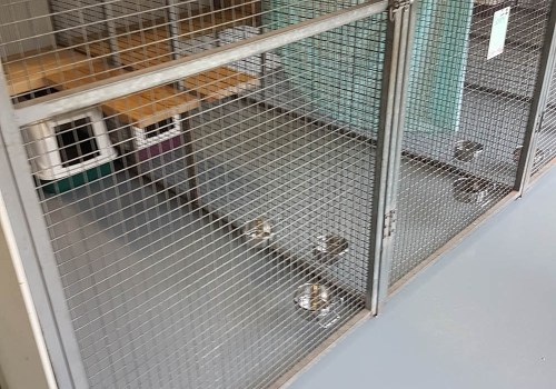 cat kennel flooring commercial