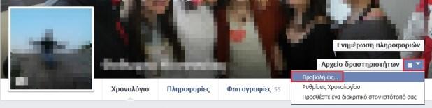 facebook-view-as