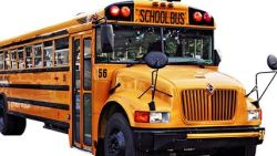 New School Bus Resource Defines Best Practice by Child Age