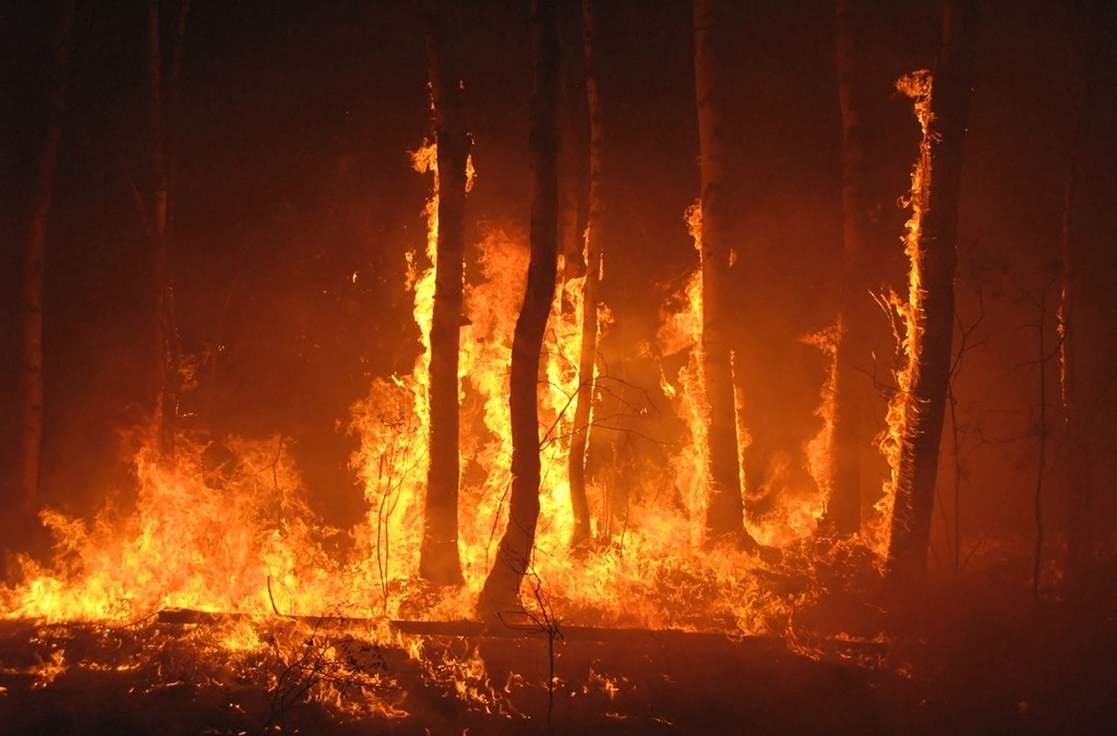 Wildfire season is approaching  Is your job site ready