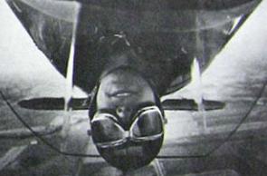 The stunt pilot essay