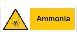 ammonia safety