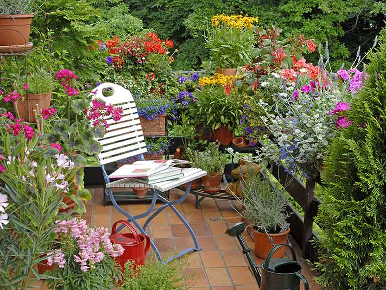 Small Garden Ideas And Inspiration Saga