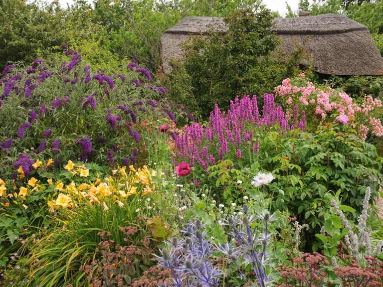 Cottage Garden Design Plants Structure & Proximity Saga