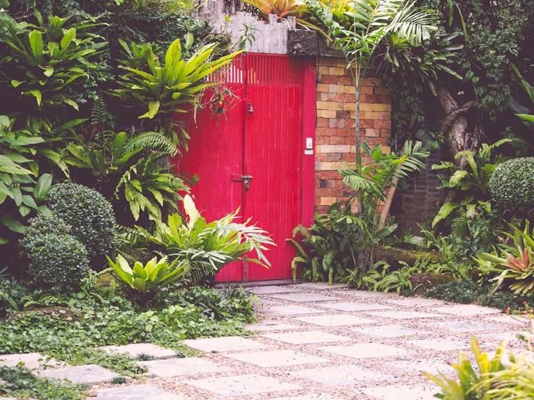 Tropical Garden Design For Courtyards & Patios Saga