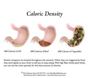 stomach-chart-wtextrecsmall-1