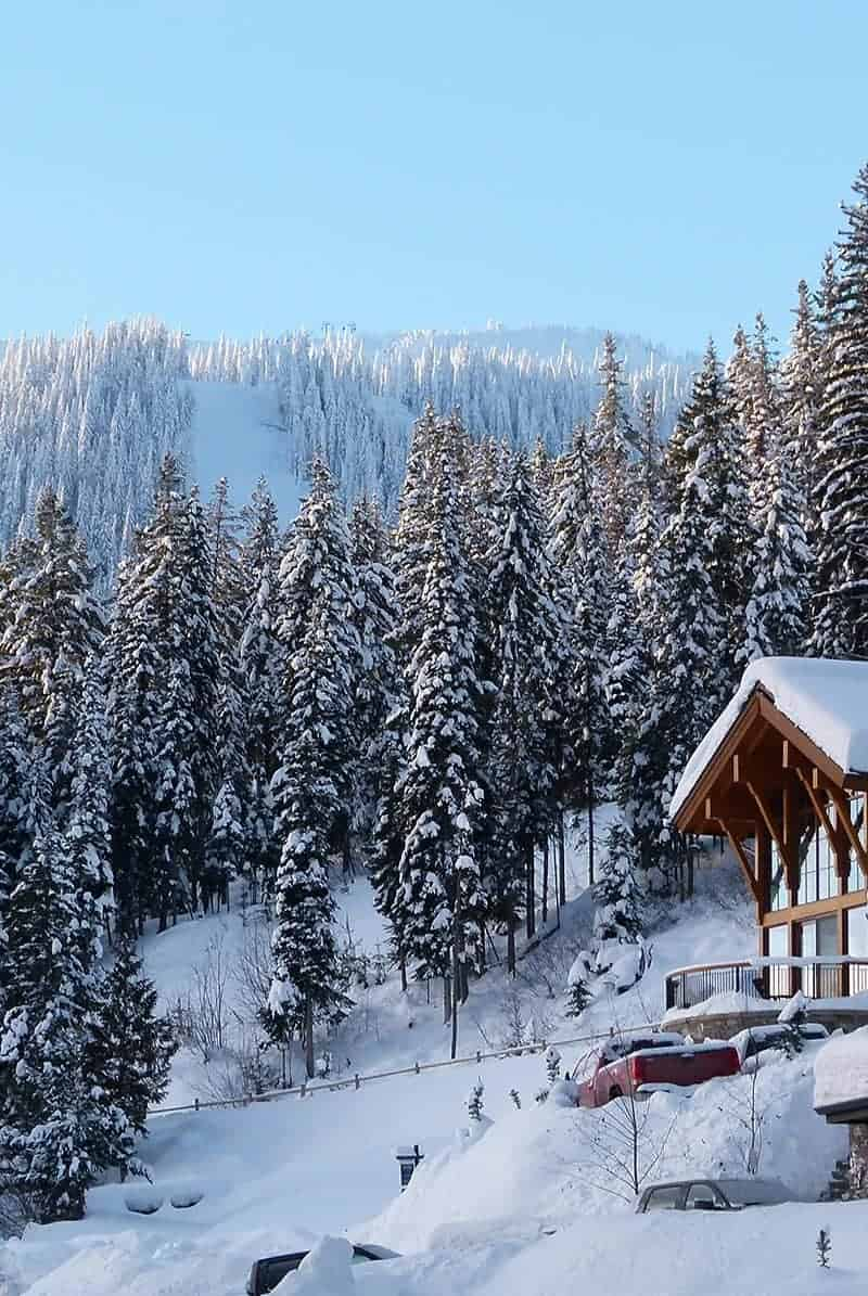 Picture of snow covered mountain ski run, trees, and house that are perfect for a ski vacation.